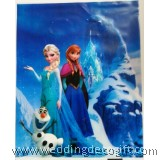 Disney Frozen Party Bag, Frozen Loot Bag – FRS11